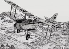 FIO DH Moth sierra
