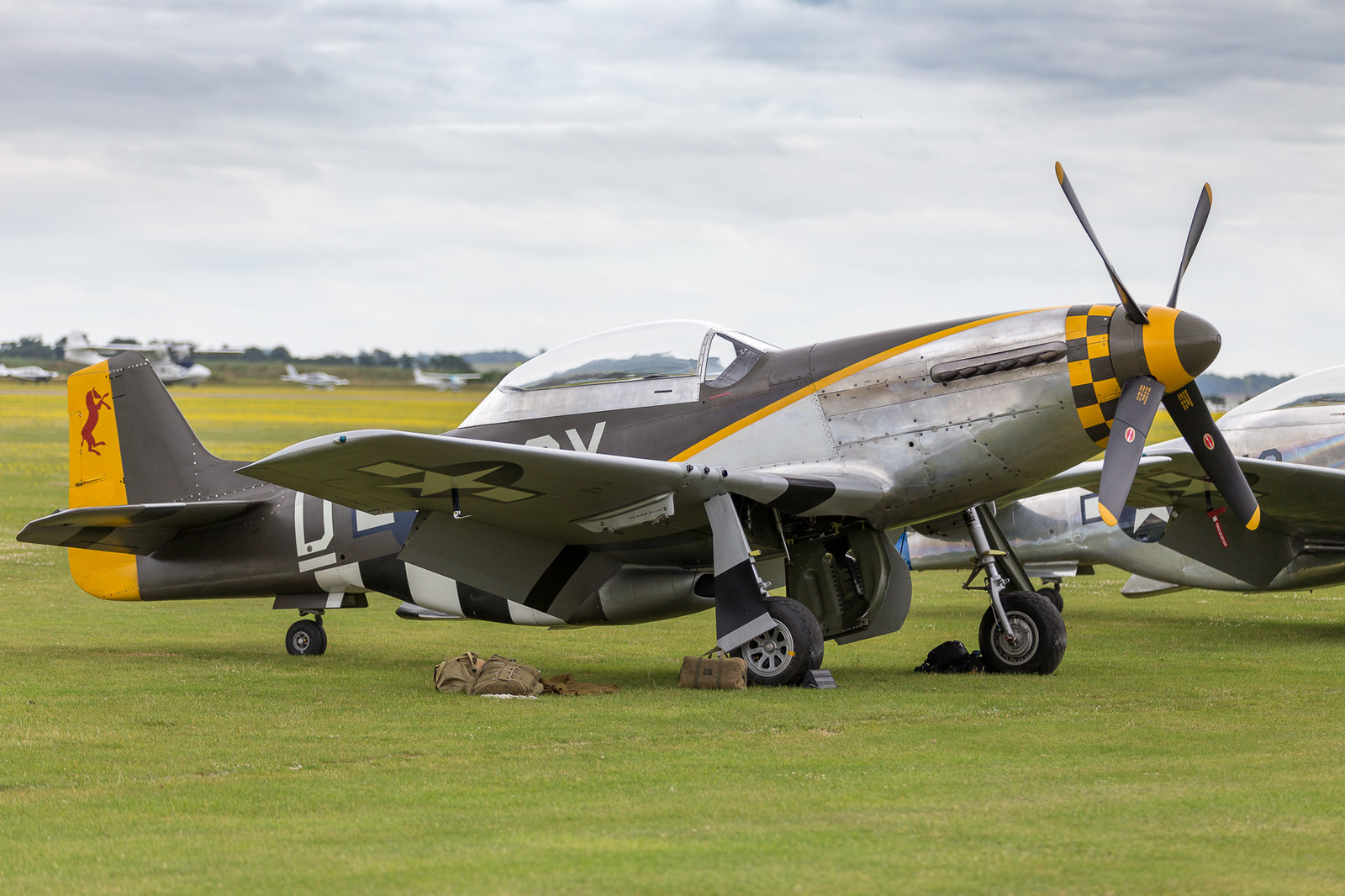 large.58d900457d0f0_DuxfordFlyingLegends