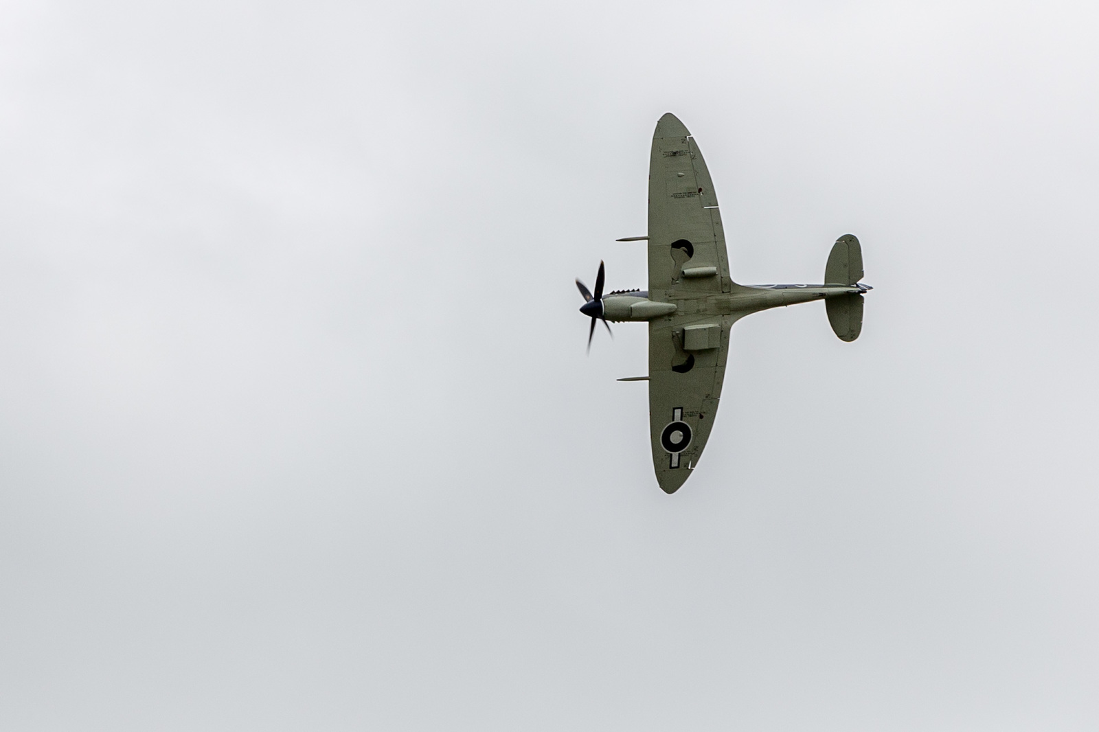 large.58da936da049f_DuxfordFlyingLegends