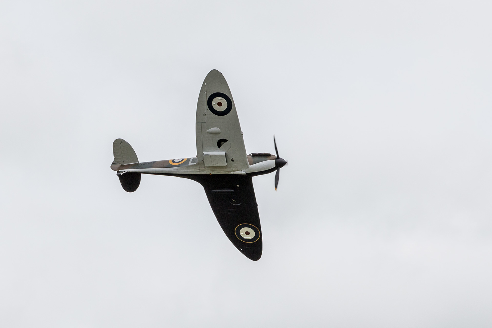large.58da93c01bc3d_DuxfordFlyingLegends