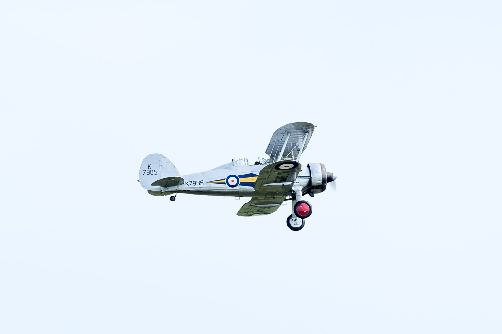 large.58da95ef194dd_DuxfordFlyingLegends