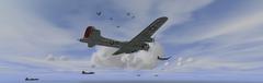 Imagen con 16 de los 24 Flying Fortress que volaron en las prácticas