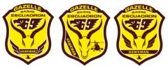 GAZELLE 2.PNG