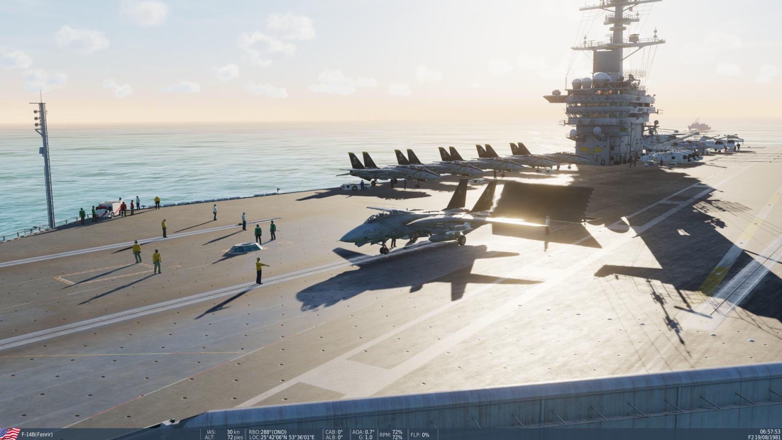 DCS F-14